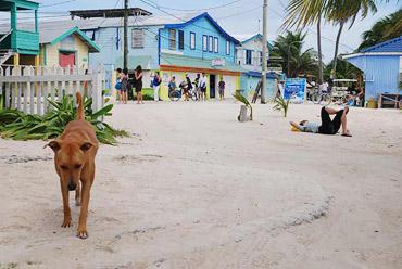 Остров Кайя Колкер – тяжелые выходные будни