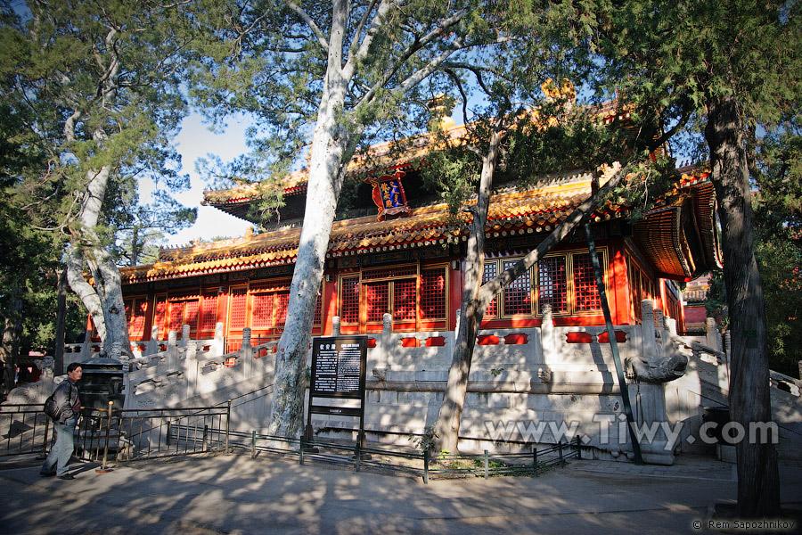 La ciudad prohibida 2008 saludos china for Jardin imperial