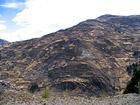 Гора в заплатках