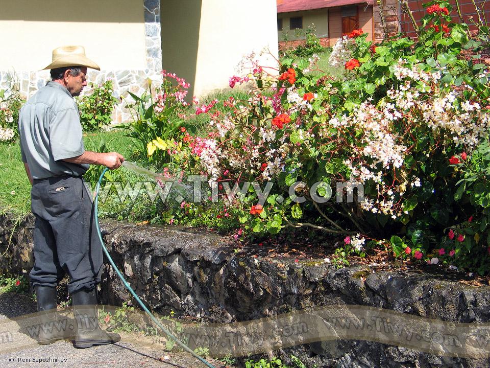 Tiwy Com Jardinero Cerca De Hotel Santo Domingo