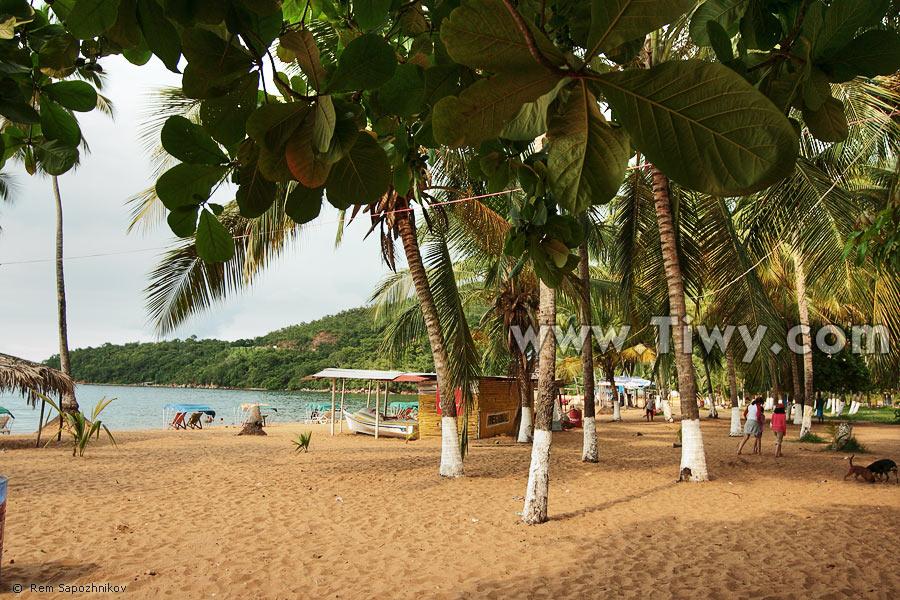 Mujeres venezolanass latinas desnudas en la playa 8